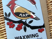 Waxwing Greetings Card