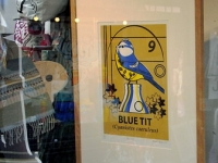 Framed Bluetit Screen Print