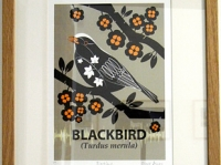 Small Framed Blackbird Giclée