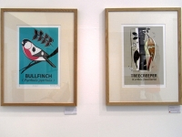 Bullfinch & Treecreeper Framed Prints