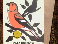 Chaffinch Greetings Card