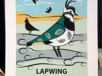 Ltd Edition Lapwing Giclée