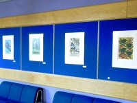 Prints from \'A Natural History\' at The Hawth Theatre