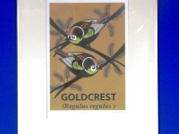 Goldcrest Print at \'The Hawth\' Theatre