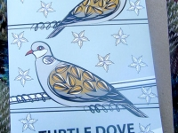 Turtle Dove Greetings Card & Recycled Envelope