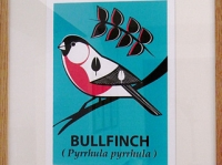 Framed Bullfinch Screenprint